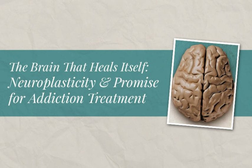 The Brain That Heals Itself: Neuroplasticity and Promise for Addiction Treatment